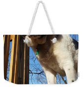 Doggone Cute  Weekender Tote Bag