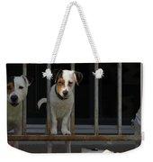 Dogs Family Weekender Tote Bag