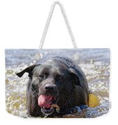 Dogs Sticks And Ponds Weekender Tote Bag