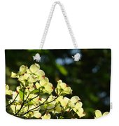 Dogwood Flowers White Dogwood Tree Flowers Art Prints Cards Baslee Troutman Weekender Tote Bag