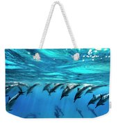 Dolphin Dive Weekender Tote Bag by Sean Davey