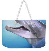 Dolphin In The Moonlight Weekender Tote Bag