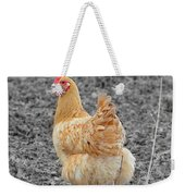 Domestic Feathered Beauty Weekender Tote Bag