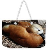 Domestic Mandarin Duck Close Up Weekender Tote Bag