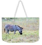 Donkey 005 Weekender Tote Bag