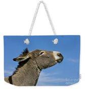 Donkey Demanding A Treat Weekender Tote Bag