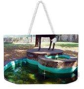 Donkey Fountain Weekender Tote Bag