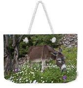 Donkey Grazing In Greece Weekender Tote Bag