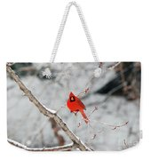 Don't Chirp With Your Mouth Full Weekender Tote Bag