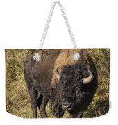 Don't Mess With This Bison Weekender Tote Bag