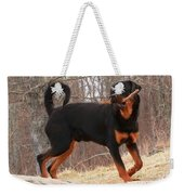 Rottie With A Tail And Stick Weekender Tote Bag