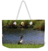 Double-crested Cormorant 3 Weekender Tote Bag