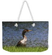 Double-crested Cormorant 4 Weekender Tote Bag