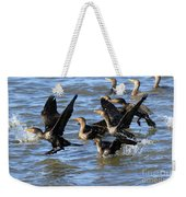 Double Crested Cormorants Weekender Tote Bag