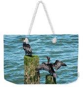Double-crested Cormorants Weekender Tote Bag