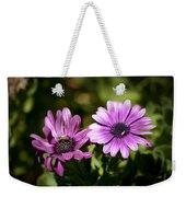 Double Purple African Daisy Weekender Tote Bag