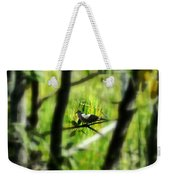 Dove In The Everglades  Weekender Tote Bag
