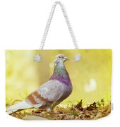 Dove  Standing Close Up Weekender Tote Bag