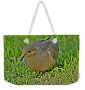 Dove With Hdr Weekender Tote Bag