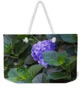 Down The Hill Weekender Tote Bag