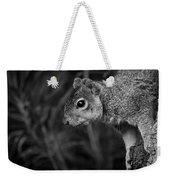 Downward Facing Squirrel Weekender Tote Bag