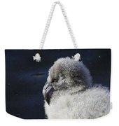 Downy - Baby Flamingo Weekender Tote Bag