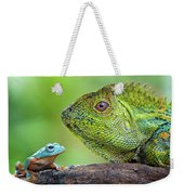 Dragon Forest And Frog Weekender Tote Bag