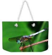 Dragonfly 11 Weekender Tote Bag