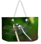 Dragonfly 12 Weekender Tote Bag