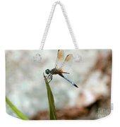 Dragonfly At Cypress Gardens Weekender Tote Bag