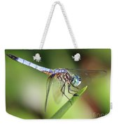 Dragonfly Captures Tiny Cockroach Weekender Tote Bag