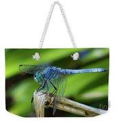 Dragonfly Color Weekender Tote Bag
