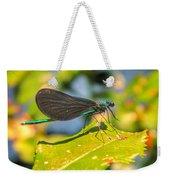 Dragonfly Dragonfly  Weekender Tote Bag