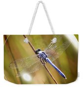 Dragonfly In A Bubble Weekender Tote Bag