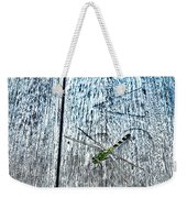 Dragonfly On A Bench Weekender Tote Bag