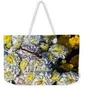 Dragonfly On White Mums Weekender Tote Bag