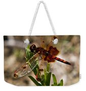 Dragonfly Resting On The Green Weekender Tote Bag