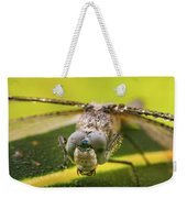 Dragonfly Wiping Its Eyes Weekender Tote Bag