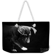 Dramatic Black And White Puppy Dog Weekender Tote Bag
