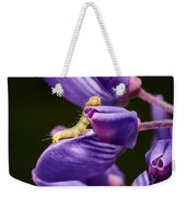 Dreaming Of Wings Weekender Tote Bag