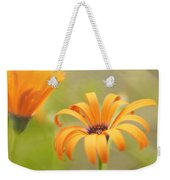 Dreams Of Orange Symphony In Spring 2 Weekender Tote Bag