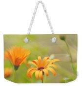 Dreams Of Orange Symphony In Spring  Weekender Tote Bag
