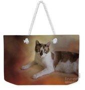 Dreamy Snowshoe Cat Weekender Tote Bag