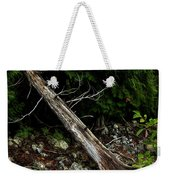 Drifted Tree Weekender Tote Bag