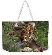 Drinking Tiger Weekender Tote Bag