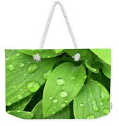 Drops On Leaves Weekender Tote Bag by Carlos Caetano