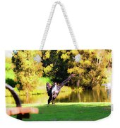 Drying Her Wings Weekender Tote Bag