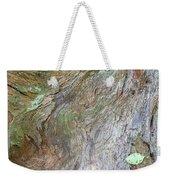 Dsc_0034 Web Weekender Tote Bag