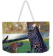 Dubbo Zoo Queen - King Cheetah And Cub Weekender Tote Bag