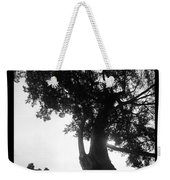 Dubignon Tree Weekender Tote Bag